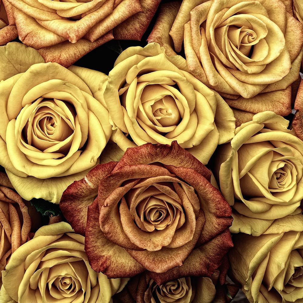 Gold_flowers.jpg