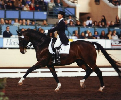 Karen Ball aboard Luciano - FEI Freestyle 2008, Del Mar