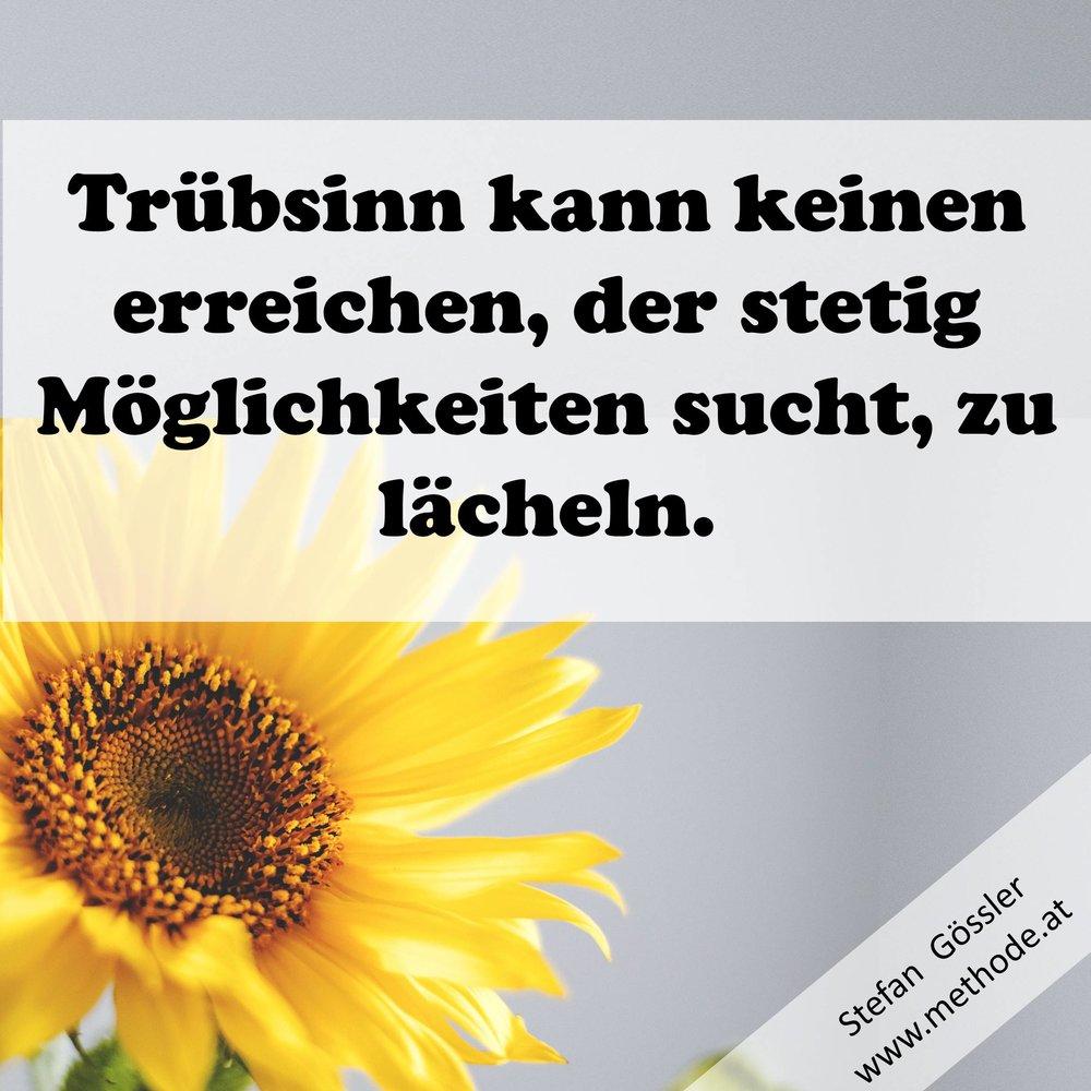 fb-truebsinn.jpg