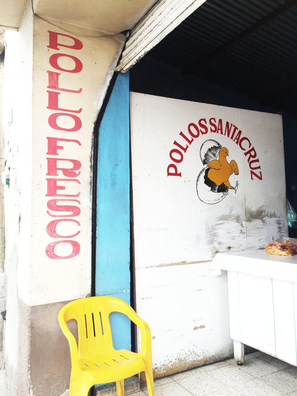 pollo_ameliagoss