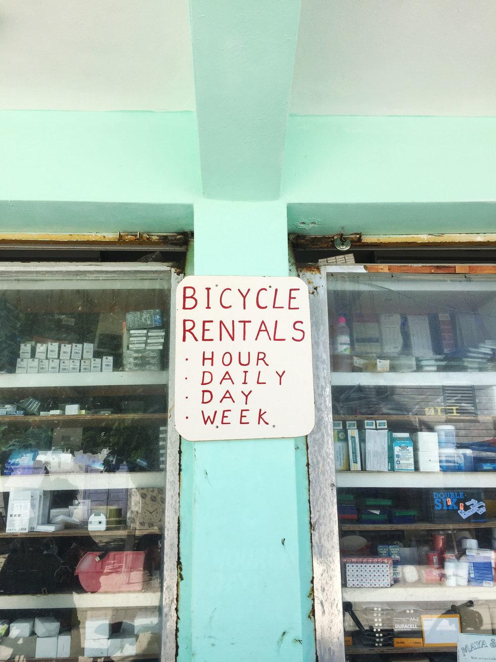 bicycle_ameliagoss.jpg