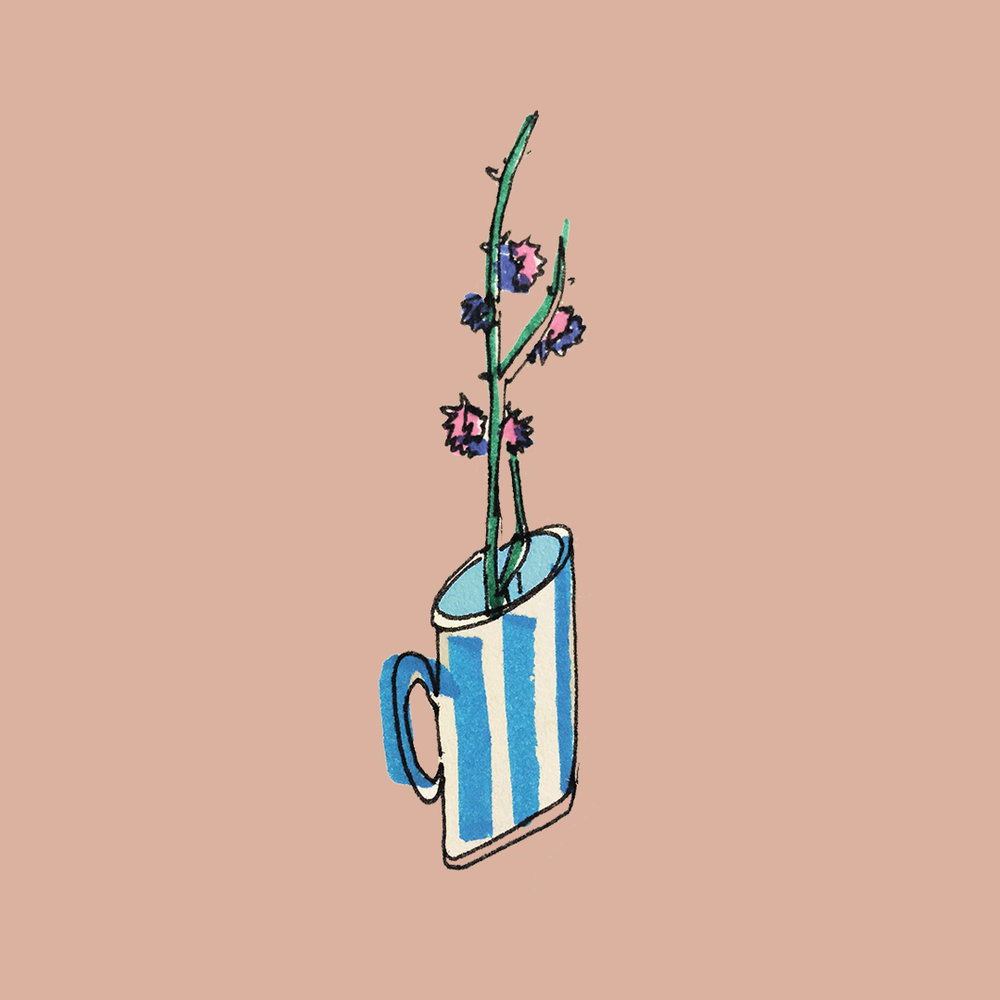 bluecup_ameliagoss