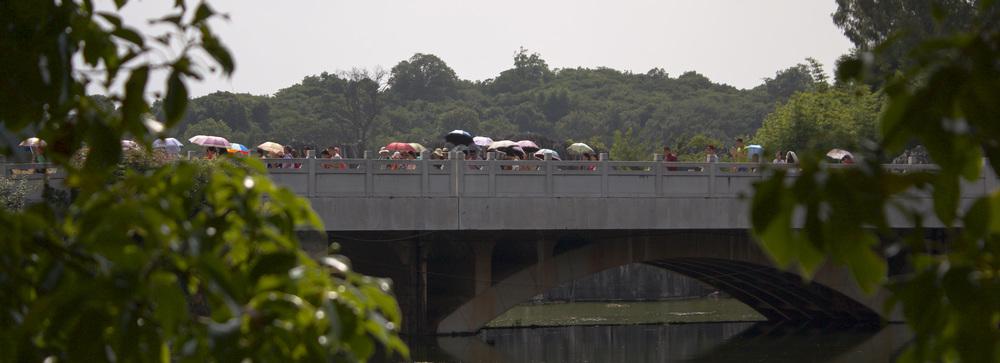 Fler paraplyn på en bro.