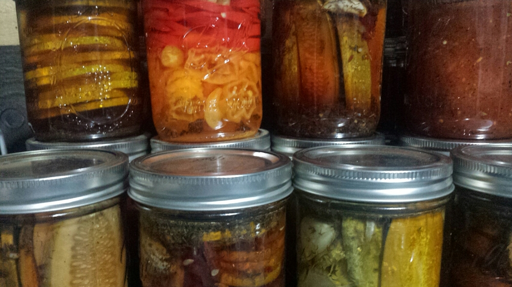(The salsa is on the far right. We had quite a busy day with salsa and pickles and such... did you know you can use Rub it Right in your pickle brine too?!)