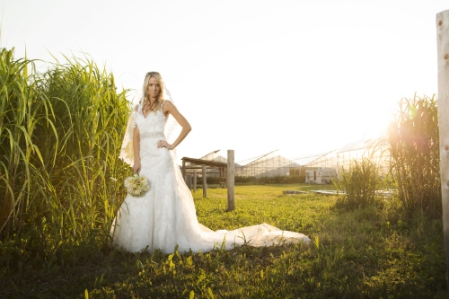 Click here to see some of our brides in our gowns!