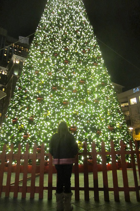 The Christmas Tree at Union Square