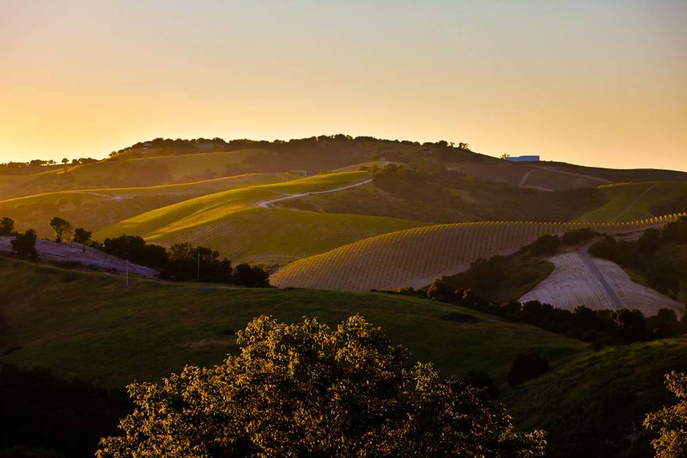 Soak in the picturesque views of the rolling hills in Paso Robles at sunset. Photo Credit to Paso Robles Jet Center.