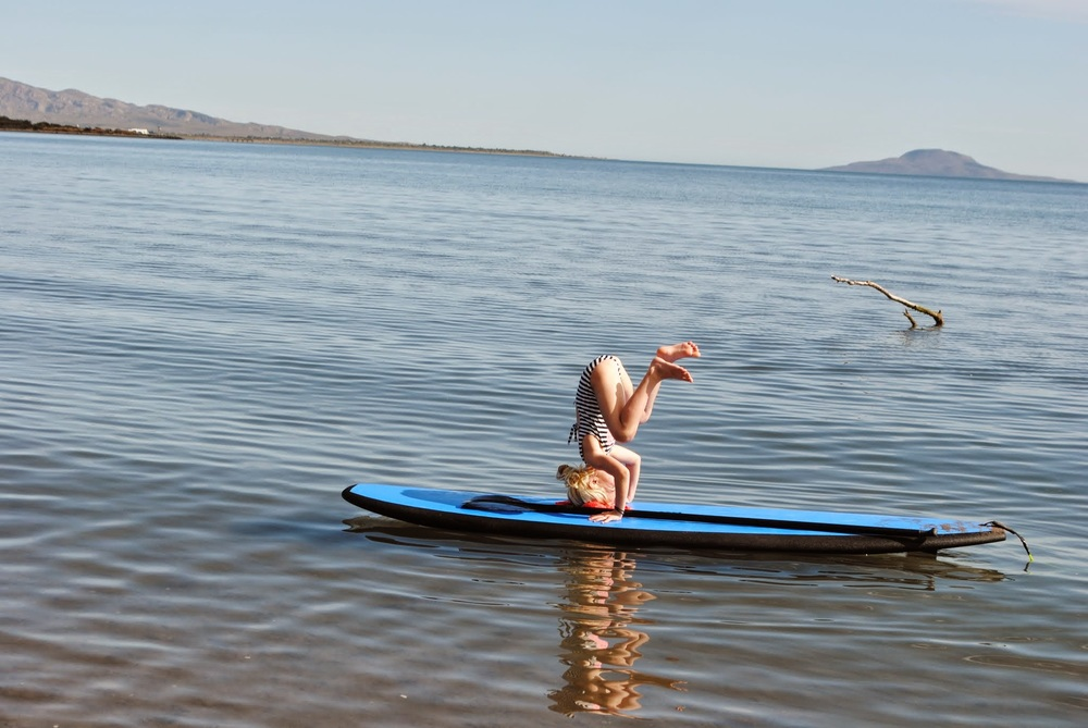 Morning yoga on the standup paddle boards.