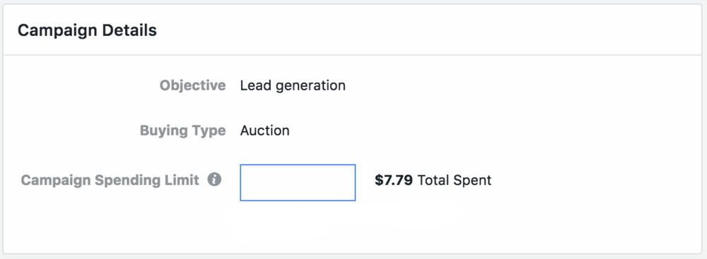 Set a budget before you start running Facebook Ads.