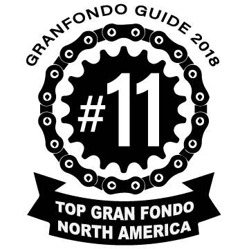 TOP11-NAmerica-badge2018.png