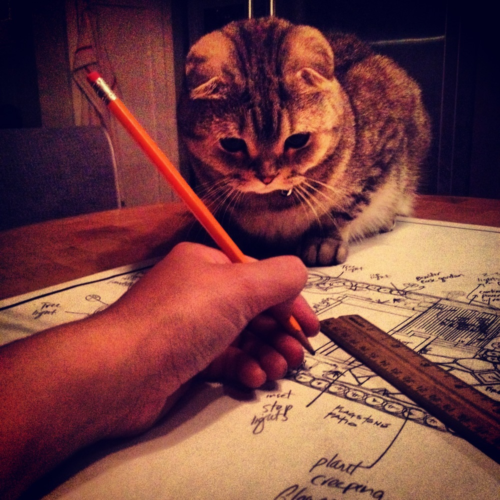 Jake performs quality control during a landscape design session.