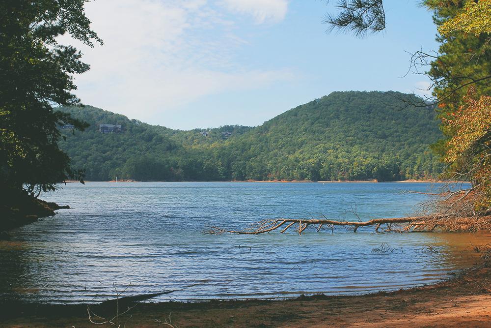 jotorrijos-jo-torrijos-asimplerdesign-redtop-lakealtoona-landscape-nature-1.jpg