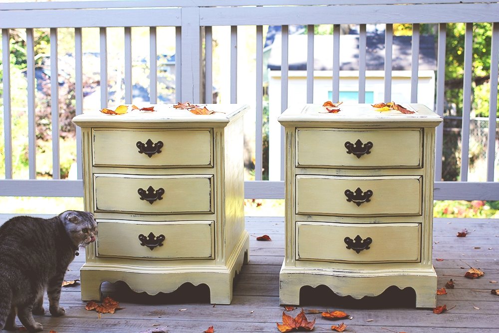What Chalk Paint Is Good Beside Annie Sloan