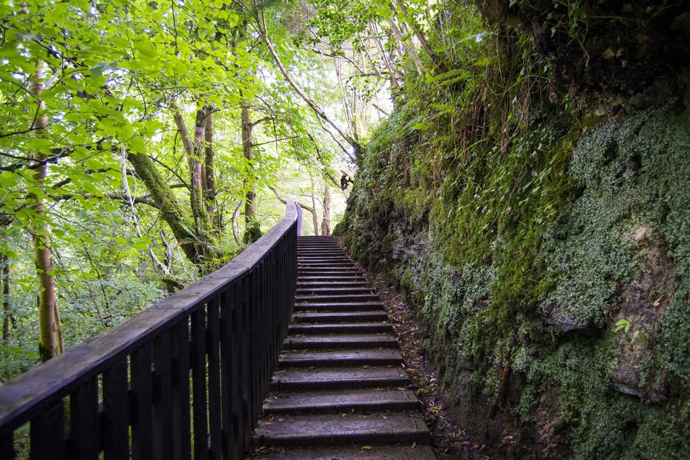 Glencar Waterfall - Return walkway