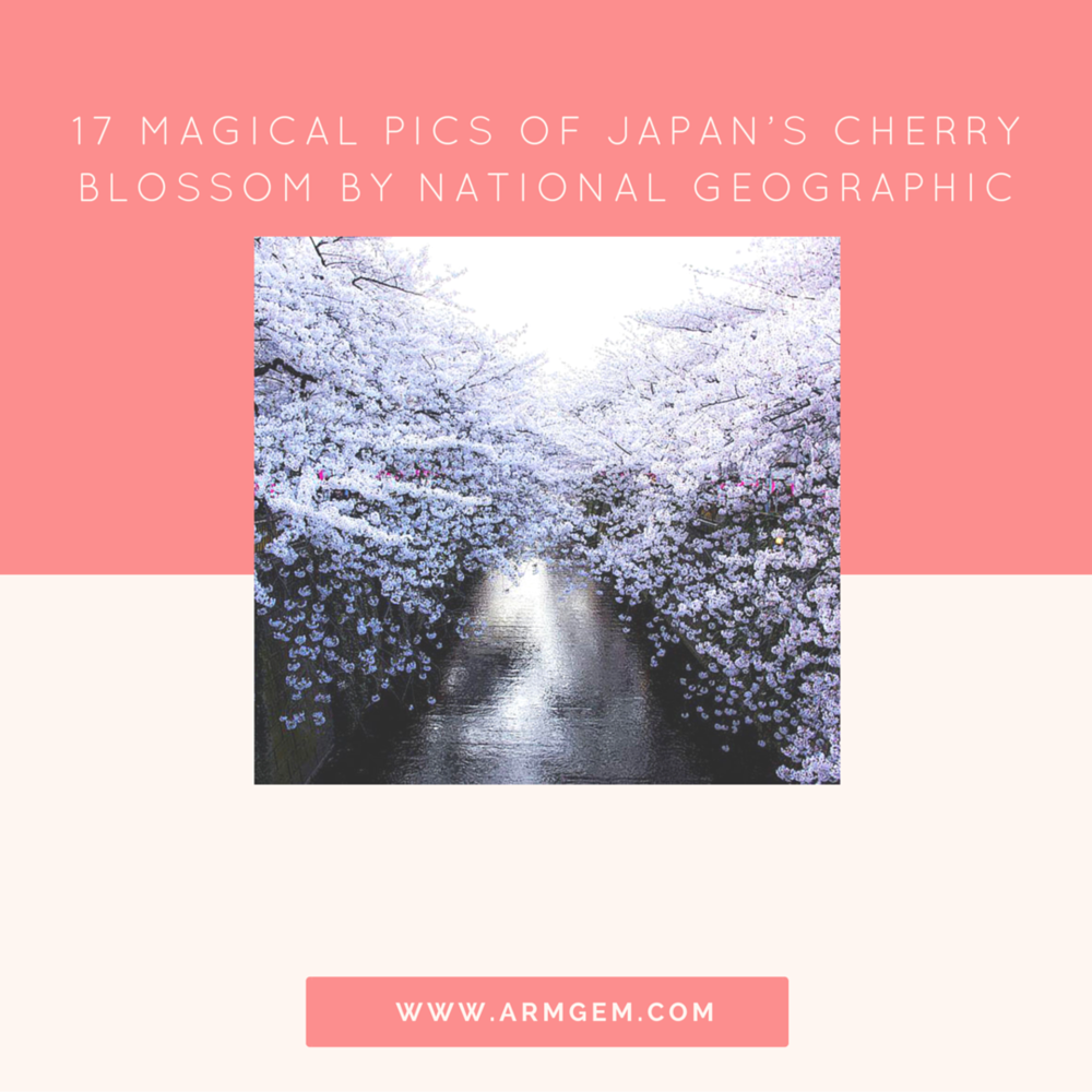 White Wall Image credits: Masayuki Yamashita
