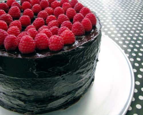 raspberry chocolate mocha cake | RECIPE on hotforfoodblog.com