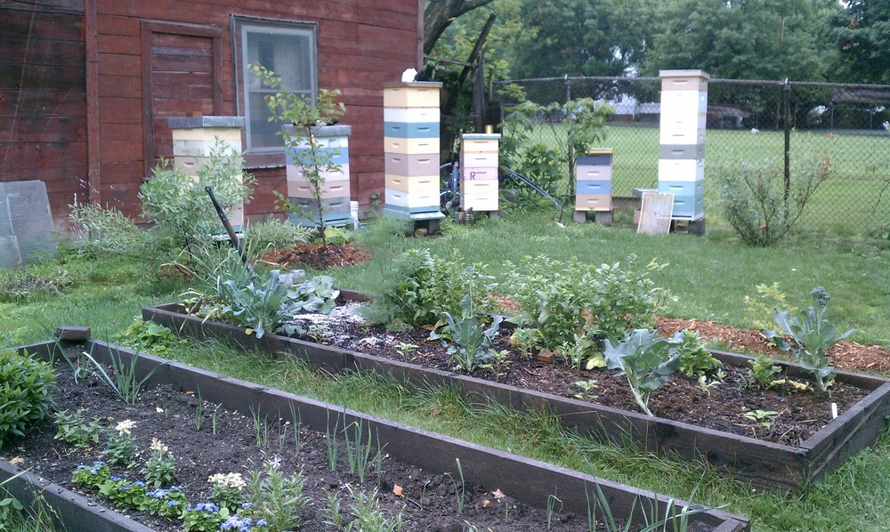 Veggie Beds & Bee Hives