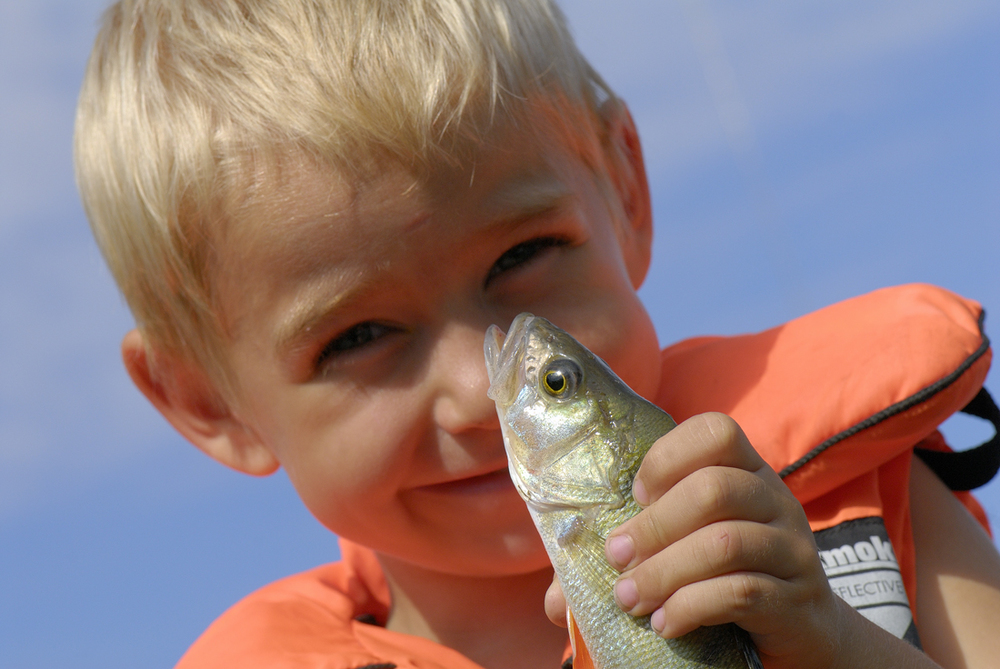 Fiske i Oslofjorden