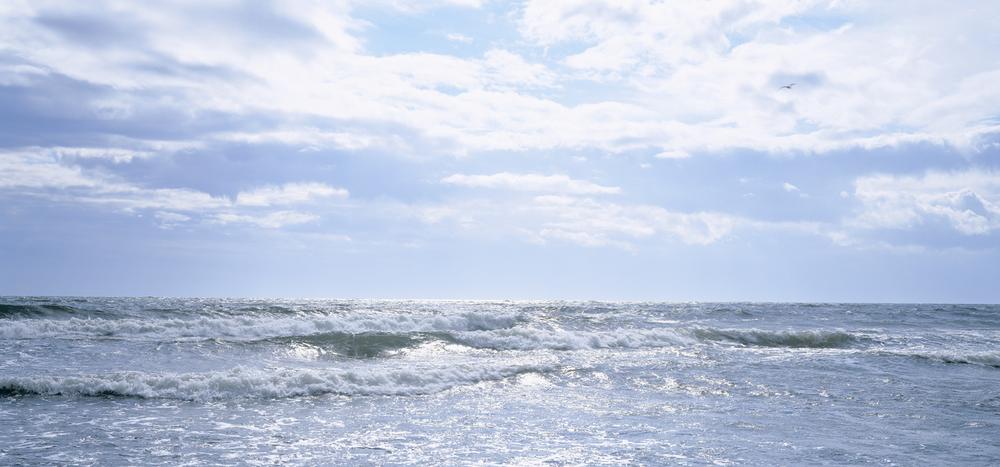 hvaler-havet.jpg