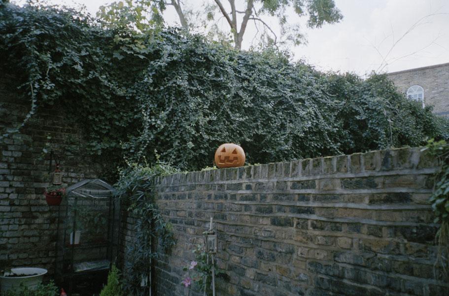 pumpkinwall.jpg