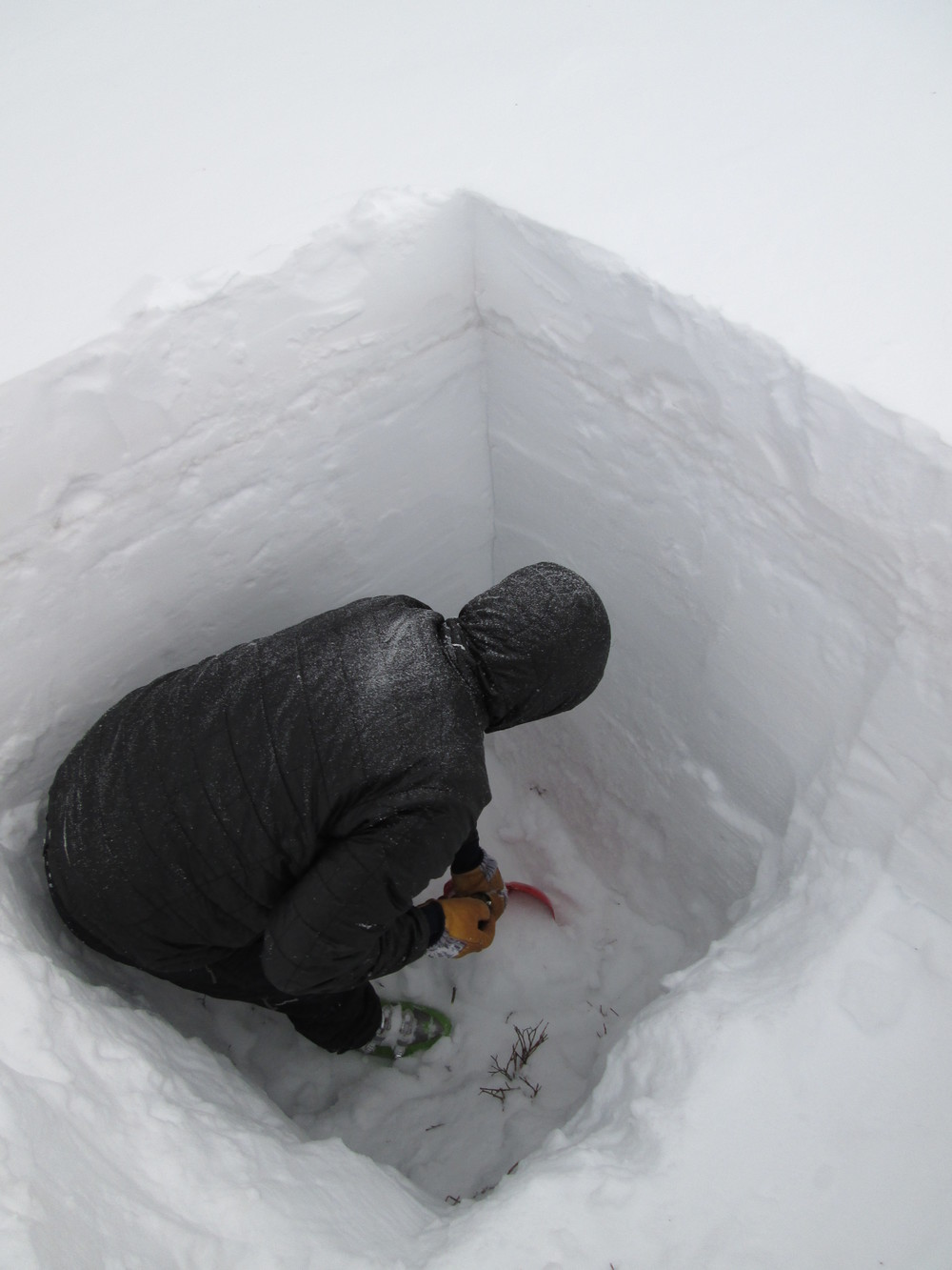 """CSAS field assistant Andrew Temple preparing the March 29 snow profile at the Hoosier Pass CODOS site. Dust layer D3-WY2014 was clearly visible in a diffuse band 8"""" below the snow surface. Dust layer D2 was present in a thin layer of ice just below D3. Dust layer D4 (March 30) fell onto the clean snow surface seen in this profile, significantly reducing snow albedo until fresh snowfall beginning today (April 2) began to bury D4. Once re-exposed, radiative forcing in layer D4 will need to melt almost 1"""" of SWE before merging with layer D3, reducing snow albedo even further."""