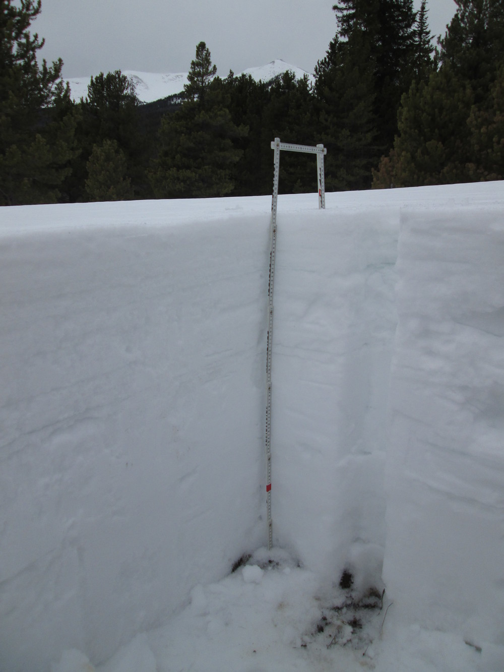 In mid-afternoon on Sunday, March 30, no dust was visible within or at the surface of the Willow Creek snow profile, seen above with Parkview Mountain in the distance.  At the time of this profile, this was the only clearly dust-free snowpack observed during this CODOS circuit of all eleven sites, and no dust was observed on the snowpack surface in the Willow Creek Pass locale.  Unfortunately, later that evening, dust layer D4 (March 30) may have fallen onto the clean snow surface at Willow Creek Pass, with minimal (or no) fresh snow covering the new dust.  If that was the case, perhaps within hours the next day D4 may have been extensively exposed and significantly reducing snow albedo until fresh snowfall beginning April 2 began to bury D4.  As long as a possible D4 layer was exposed to direct solar radiation in that interim, melt water percolating downward from the dirty snow surface would have hastened the warming of the underlying Willow Creek watershed snowpack toward isothermal.