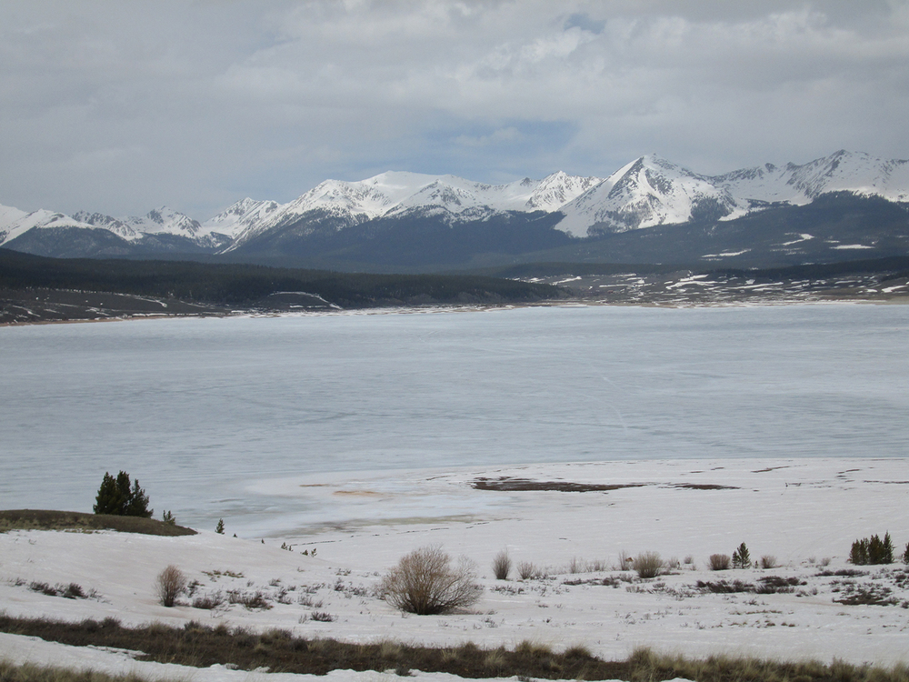 Merged dust layers D4 and D3 were extensively exposed at the snowcover surface near Taylor Reservoir on April 23, 2014 and snowcover was considerably reduced since our prior March 28 site visit.