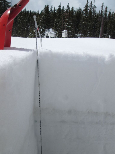 "The upper portion of the 56"" April 21, 2015 snowpack at the Berthoud Pass CODOS site, showing the impressive 15"" layer of new snow containing 2.95"" of SWE that had recently fallen onto a lightly dust-stained layer of melt-freeze ice."