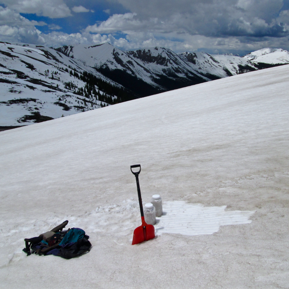 "Collecting an ""all layers merged"" (ALM) sample of D3/D2/D1 at Independence Pass on June 15, 2015.  This location, where wind drifting had concentrated dust into a 'dune' during wet deposition, was selected for this ALM sampling in order to maximize the amount of dust contained in the volume of snow packed into the two Nalgene bottles.  At this spot of concentrated dust, albedo is more reduced than at a site just a few yards farther west, between 'dunes' (as seen below)."