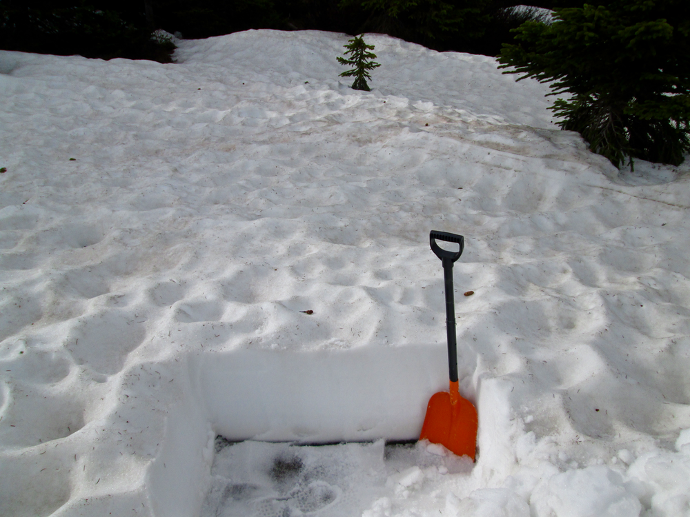 "Dust layer D3, perhaps merged with layers D2 and D1, was present at the Hoosier Pass snowpack surface mixed with almost the entire winter's worth of heavy vegetation debris and with recently deposited yellow pollen. Collecting a useful ""all layers merged"" sample was not feasible at or near this Hoosier Pass site."