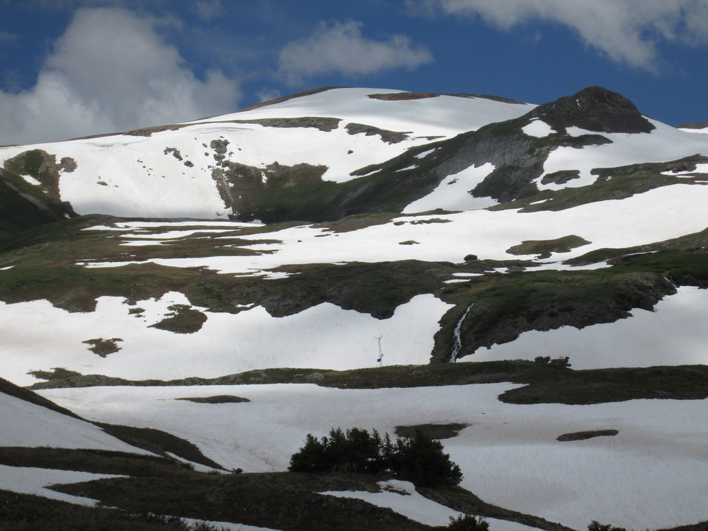 A view of the upper, alpine portion of the Senator Beck Basin Study Area on June 29, 2015. The Senator Beck Study Plot (SBSP) instrument tower is seen in the center of the image, at 12,180'. Peak 13,510' is the high point in the distance. This image depicts the comparatively Min(imal) Dust intensity observed during WY 2015, and the comparatively minor reduction in snow albedo produced by 2 grams of fully exposed and merged D3/D2/D1 dust.  Also evident in this image is the concentration of the remaining snowcover on the leeward portions of major terrain features in the Basin (and typical of all nearby terrain). Although such redistribution of snowcover by wind (and of dust, as seen in the uneven concentrations of dust here) to leeward slopes is routine in alpine terrain, very high and sustained winds during Storm #5 produced unusually intense erosion in exposed areas and heavy re-deposition of the snowcover onto lee slopes nearby.
