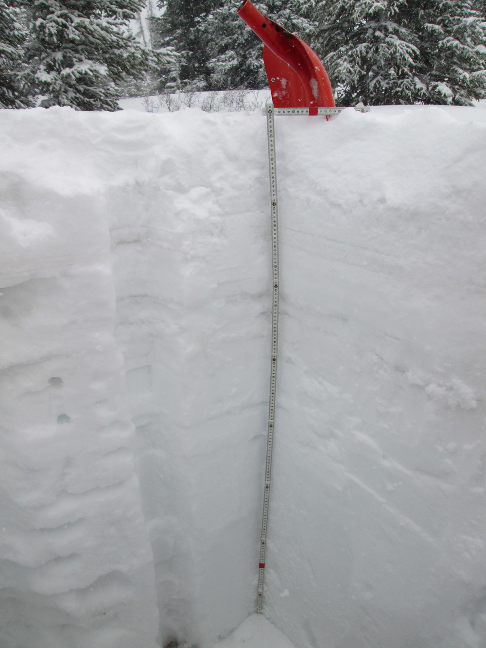"The Hoosier Pass snow profile on April 15, 2016.  In this photo, a light dust event (D3) is located 1' below surface, this was covered another 20"" during the April 15-17 storm event."