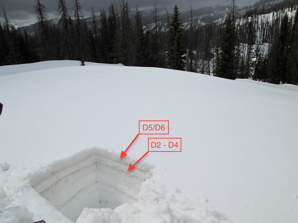 "Wolf Creek Pass snow profile on May 10, 2016.  The merged D5/D6 dust layers are seen as a band 4"" below the surface.  At the time of the visit, rain-on-snow (which occurred while on-site) had not significantly leached D5/D6 into underlying snow, reducing its visual intensity.  Merged dust events D2-D4 are 8"" below surface.  The thicker bands below D2/D4 are clear ice."