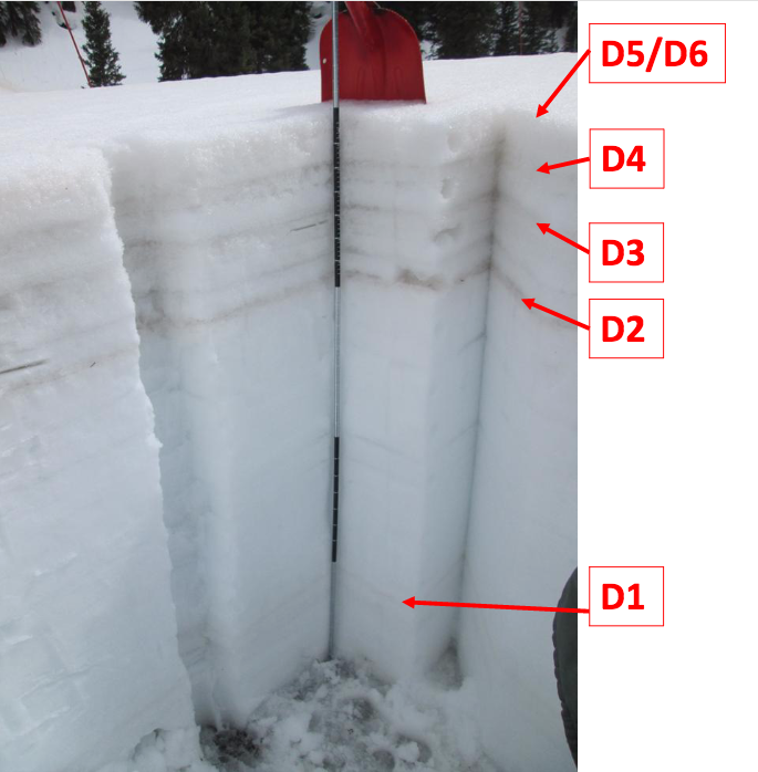 "Snow profile at SASP on May 20.  D5/D6 emerged with D4 sitting directly underneath, but has not fully merged with D5/D6.  Some leaching of dust downward has taken place over last couple weeks due to meltwater and occasional rain.  D4 is separated from D3 by a ~4"" clean snow band."