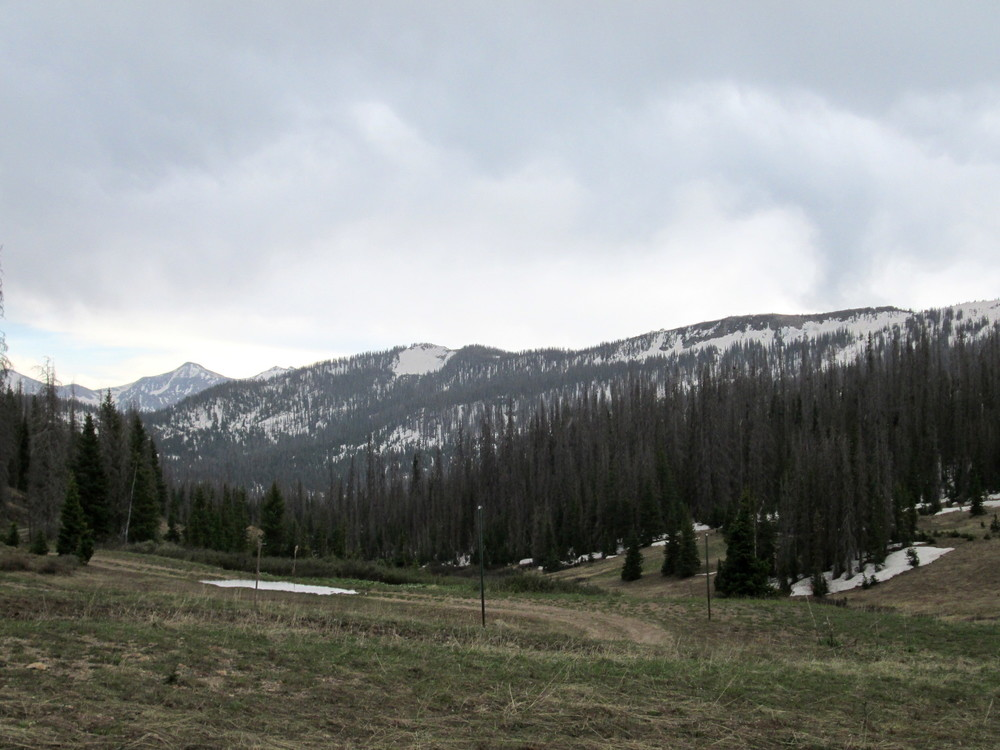 Wolf Creek Summit on June 10. Photo looking southeast. Northerly aspects at elevations approximately above 11,000' still predominately snow covered.