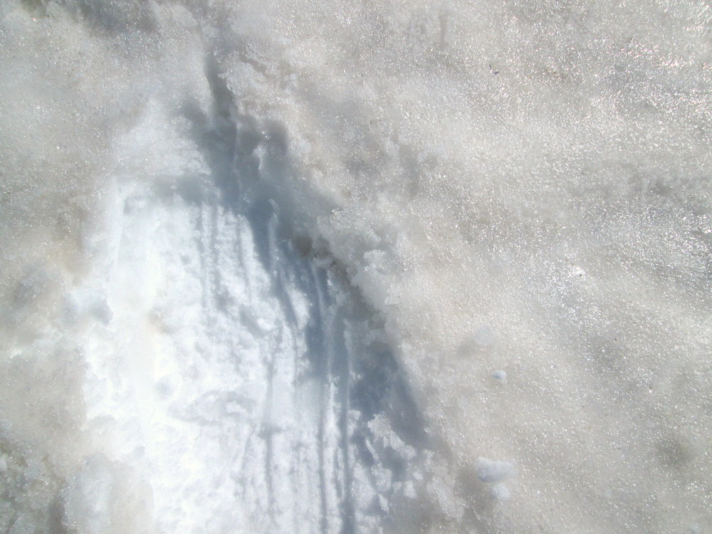 Close up picture of the snow surface at Spring Creek Pass in the San Juan Mountains.  The disturbed snow reveals clean snow under the surface, highlighting the dust on the surface and illustrating the difference in albedo.