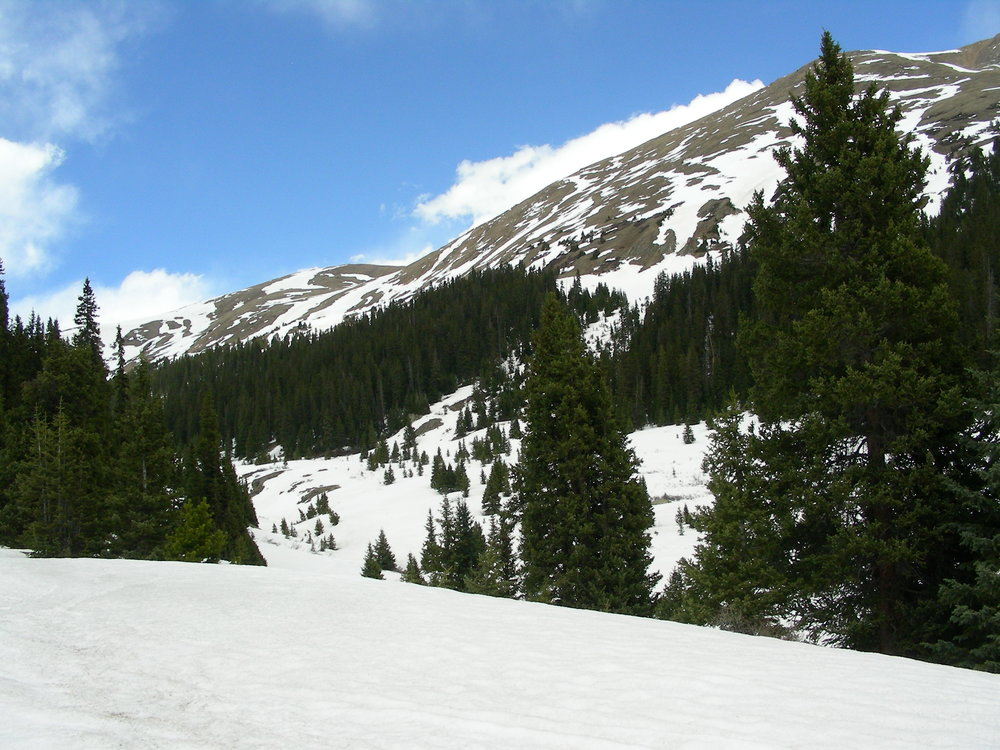 Looking up valley towards Loveland Pass from sample site.
