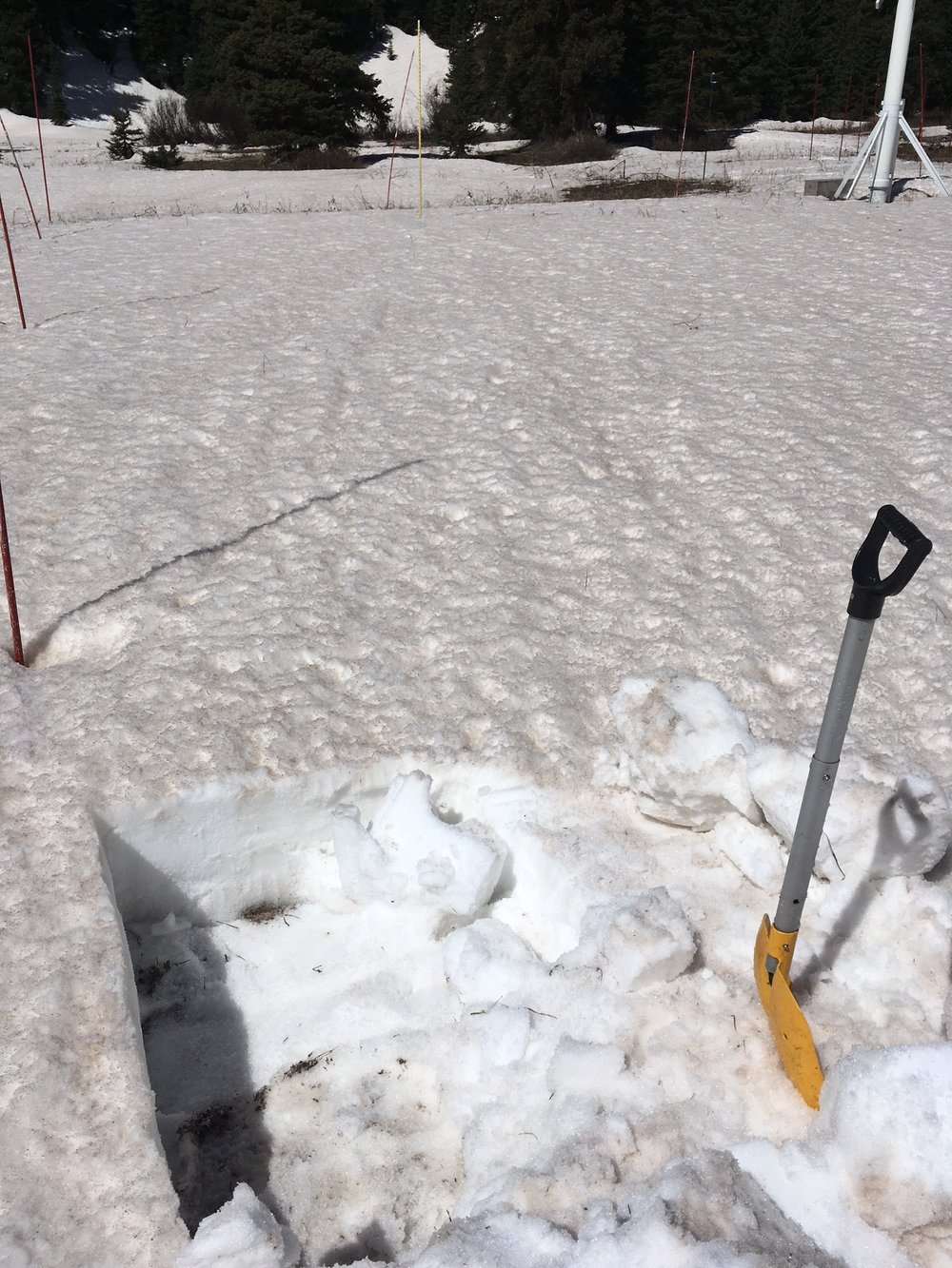 Shallow snow pit shows snow remaining at Swamp Angel.  All layers merged samples were collected on this day (May 14).