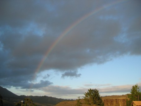 Image of Muir Beach Pot of Gold