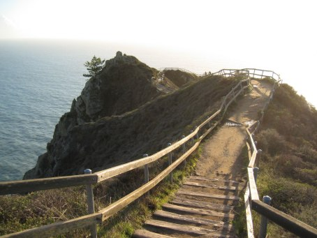 Image of Muir Beach Overlook