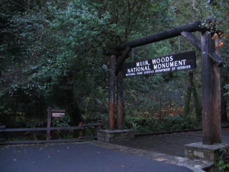 Image of Muir Woods