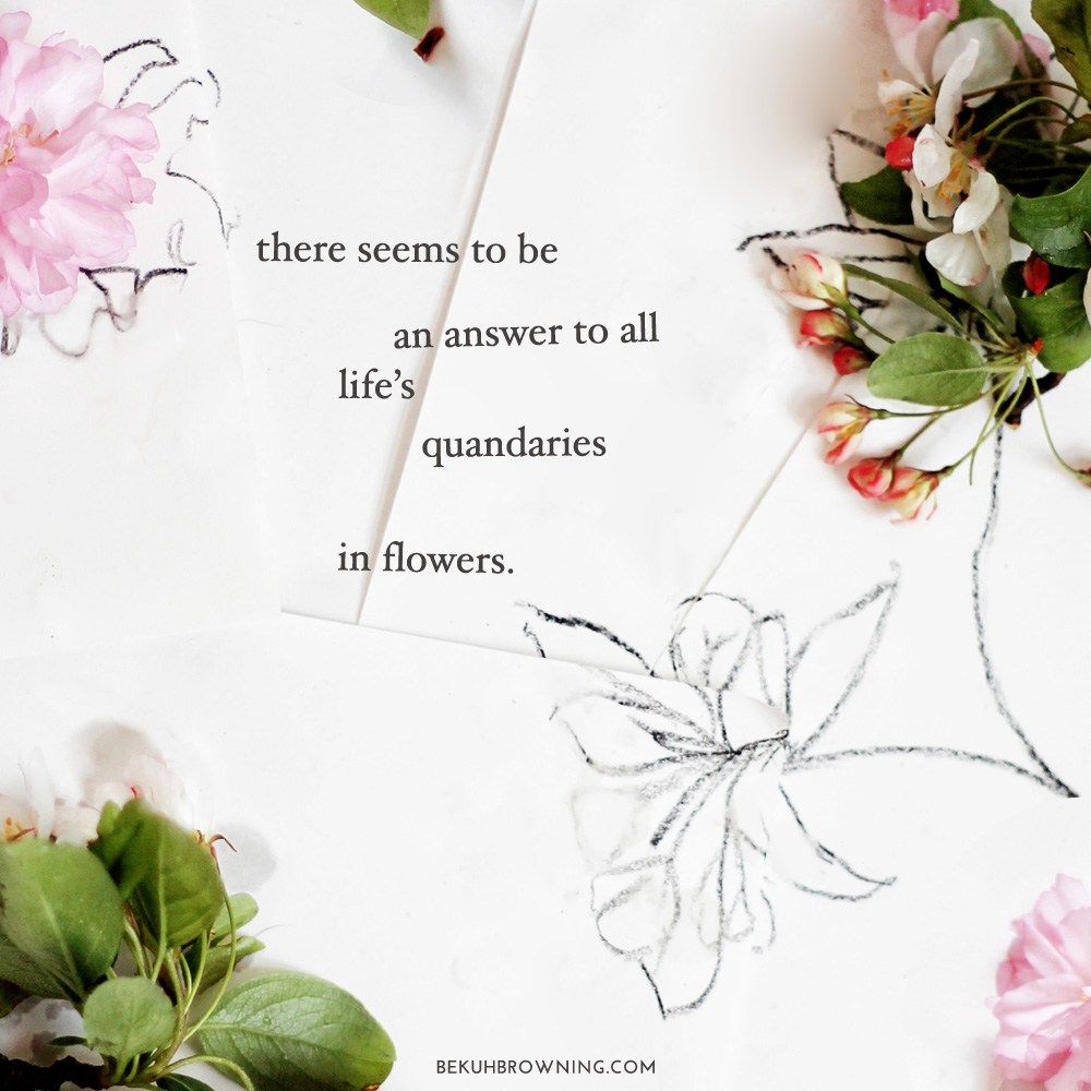 Flower Quotes | My Favorite Quotes On Flowers Chatham St House