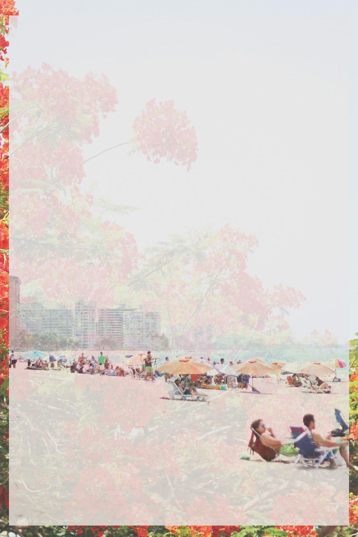 ocean park, puerto rico | via: bekuh b.