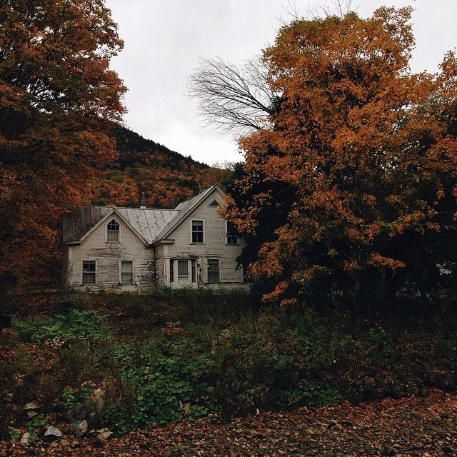 autumn farm | via: bekuh b.