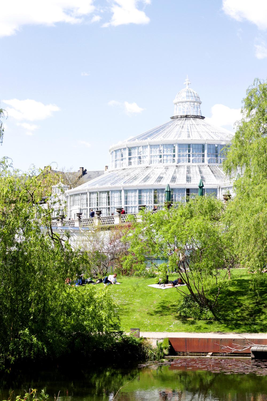 copenhagen botaical gardens | via: bekuh b.