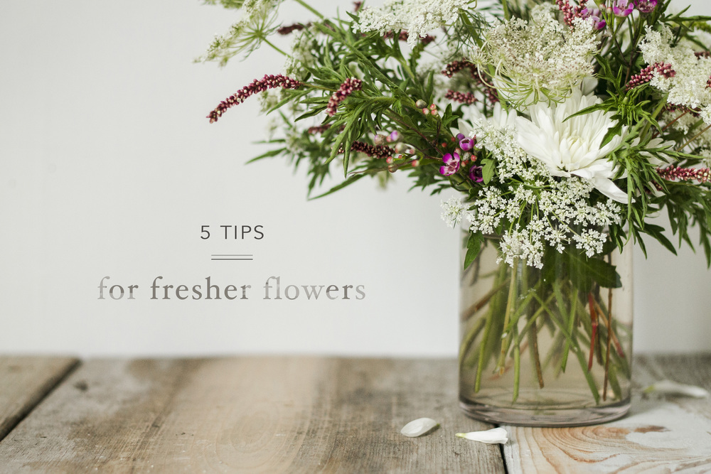 5_Tips_Fresher_Flowers_Intro.jpg