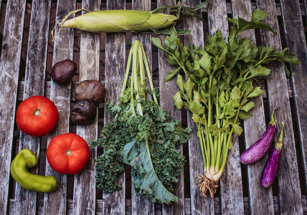 Greens grow Summer CSA | Farm Fresh in the City | via: bekuh b.