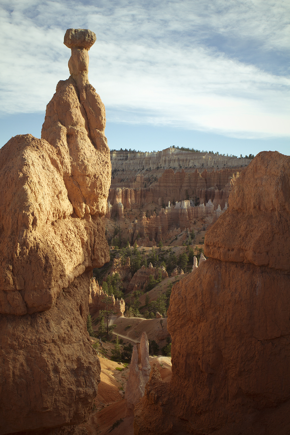 Rhodes Wedding Co Bryce Canyon 31