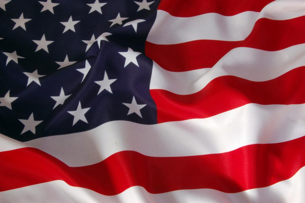 Veterans Day Salute - American Flag.jpg