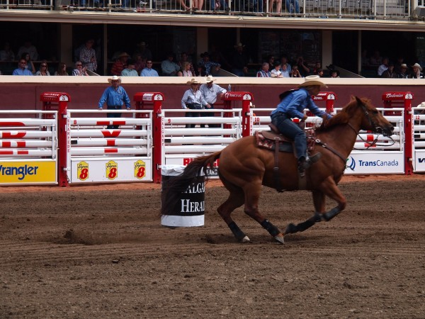 Ladies barrel racing